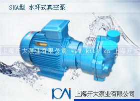 SKA型水环式真空泵
